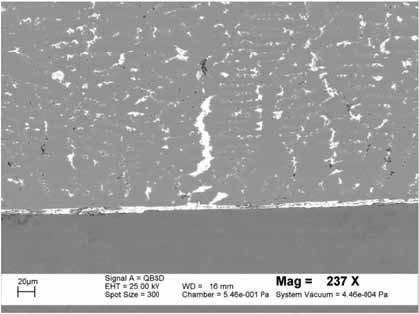 Figure 10. SEM image of the metallographic section, illustrating the lead migration