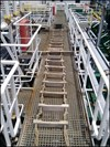 Figure 4. The pilot ladder laid out for inspection after the fall. Source: Dorval Ship Management.