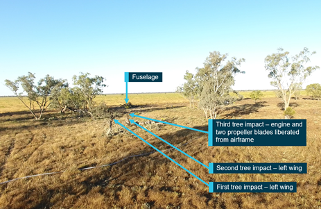 Figure 7: Accident site showing tree impacts. Source: ATSB