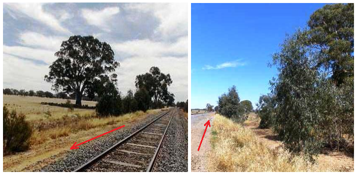 Figure 5: Lineside tree growth. Arrows show direction of train