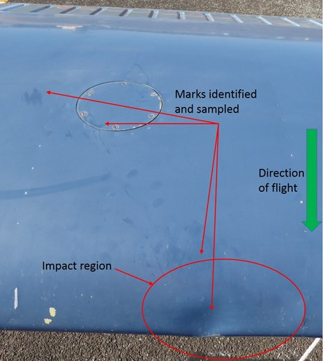 Figure 2: Overhead image highlighting identified surface marks