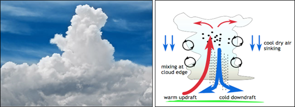 Figure 4: A towering cumulus (left) and the typical cycle of up- and down-drafts (right). Source: namesofclouds.com and kiwi.atmos.colostate.edu